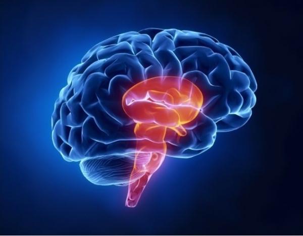 Разновидности инсульта и его причины возникновения.