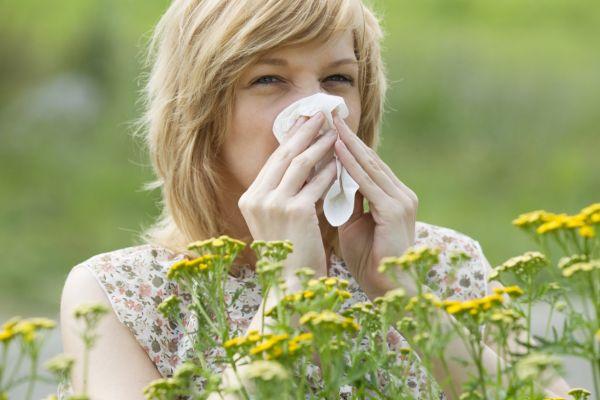 Поллиноз - что это за болезнь и как выявить, на что именно у вас аллергия?